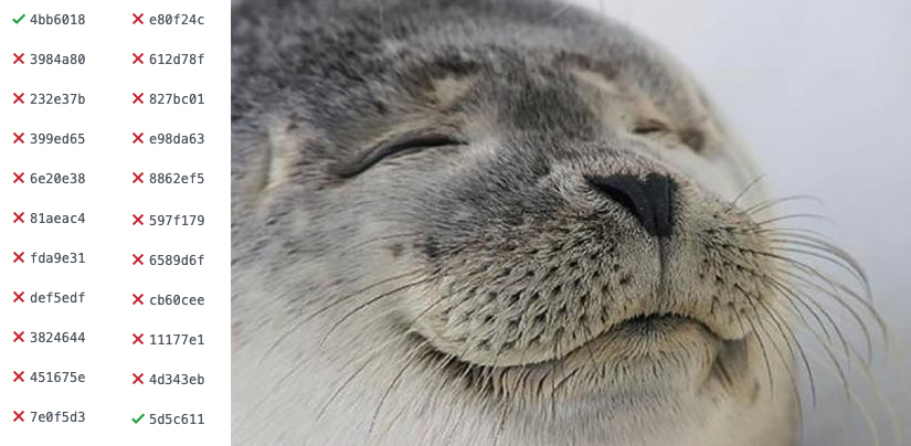 Satisfied seal when their build finally passes again